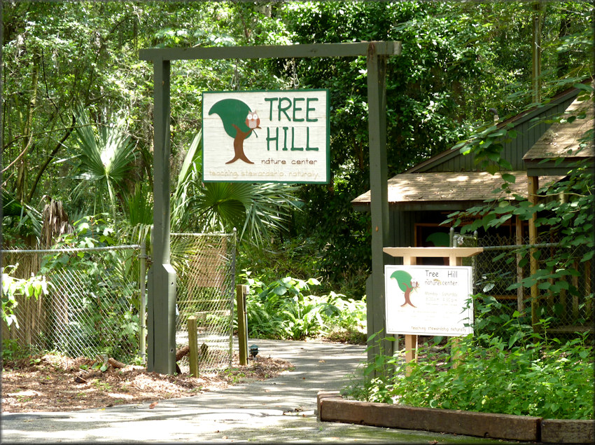 ALL-COUNCIL TREE HILL CLEANUP - NEW DATE!
